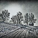 Little hut up the hill by Kurt  Tutschek