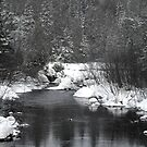 """Little Stream """"alive"""" in the Deep Freeze :) by TerriRiver"""