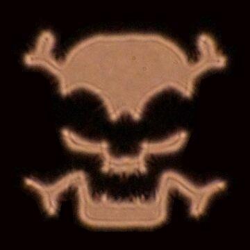 Skull and Crossbones by marialberg