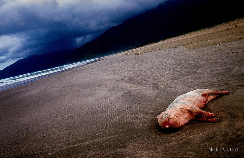Pig on the beach,Lang co,Vietnam by Nick Pautrat