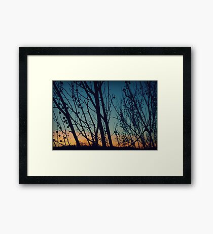 Dancing With the Sunset Framed Print