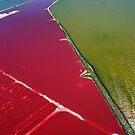 Red salt delta by Michelle Dry
