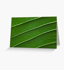Nature pattern Greeting Card