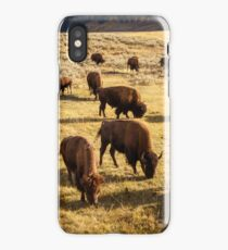 Bison in Lamar Valley iPhone Case/Skin