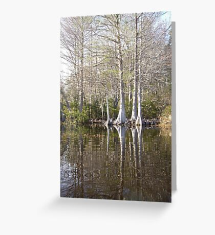 Silver Trees and Knees Greeting Card