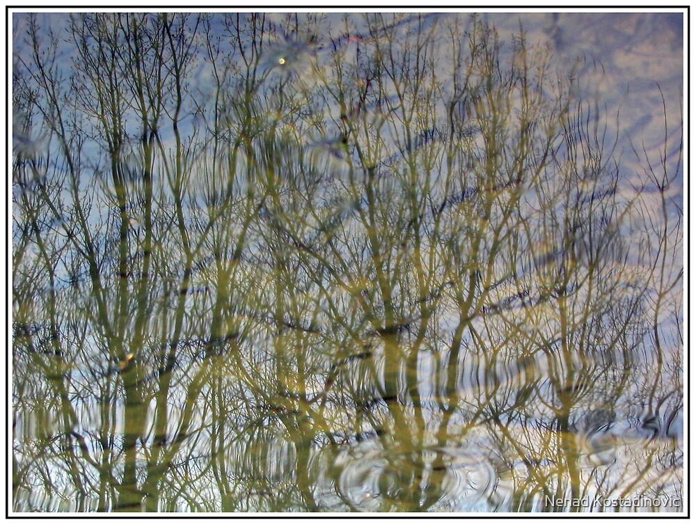 Mirror river 2 by Nenad Kostadinovic