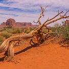 The Wind Blew That Way by JohnDSmith
