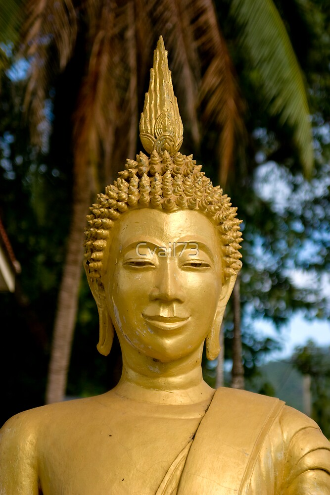 Quiet Buddha by Cvail73