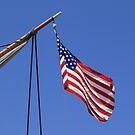 USA flag sail ship by Henrik Lehnerer