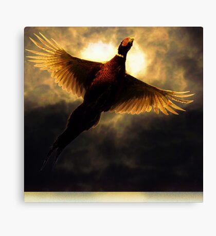 Flying through the sunlight Canvas Print