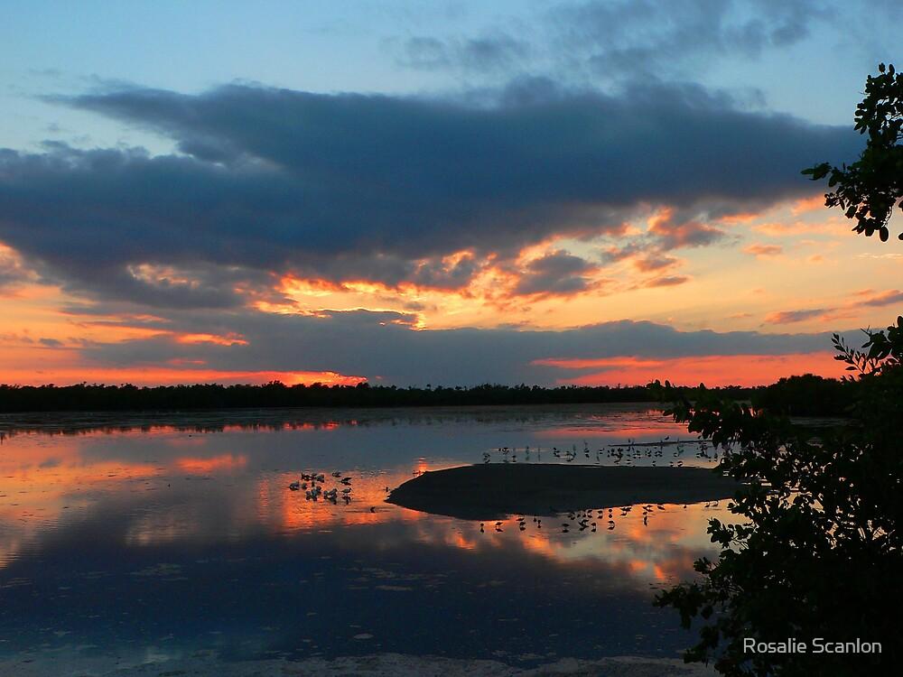 Dramatic Sunset by Rosalie Scanlon