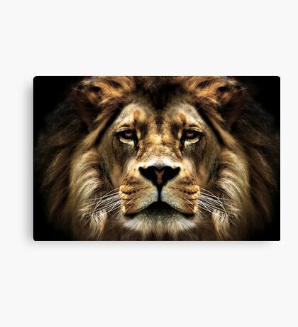 The Lion, the witch..... Canvas Print