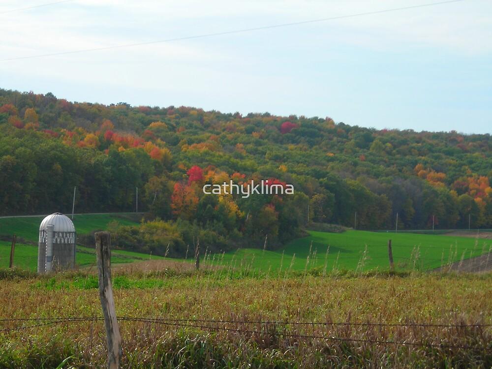 Wisconsin Autumn by cathyklima