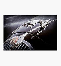 1964 Jaguar MK2 Saloon Hood Ornament and Emblem -1421ac Photographic Print