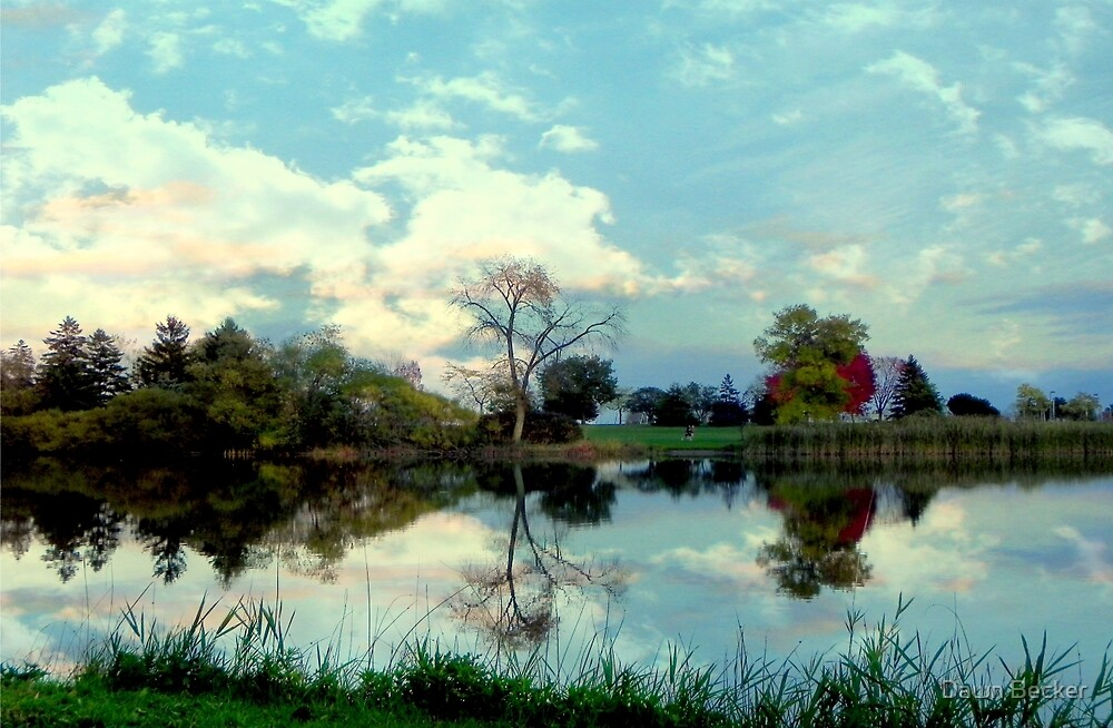 Autumn Reflections by Dawn Becker