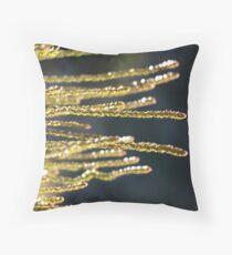 Polblue - Barrington Tops Throw Pillow