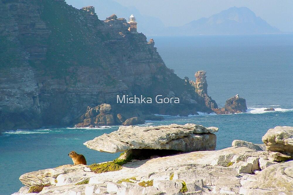 Rock Mouse by Mishka Gora