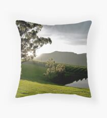 After the Storm # 1 - Audrey Wilkinson Vineyard- Hunter Valley, Australia Throw Pillow