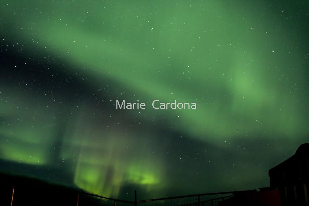 Aurora At Seal River  by Marie  Cardona
