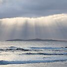 Sunrays Mystery Bay by Brett Thompson