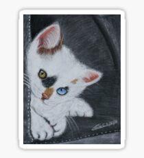 Chaton Sticker