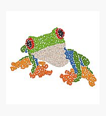 Red Eye Tree Frog Photographic Print