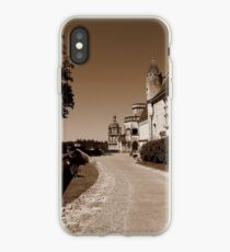 Loches  iPhone Case