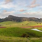 Tilba Valley by Brett Thompson