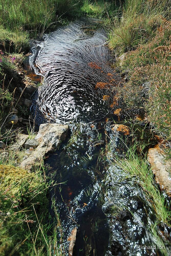 Peaty Waters by Richard Ion