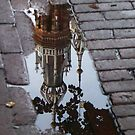Fallen into the Puddle by Hans Bax