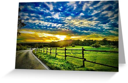 Fantasy Road by Monica M. Winkler
