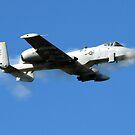 Ein A-10 Thunderbolt II-Pilot feuert die 30-mm-Kanone des Flugzeugs. von StocktrekImages