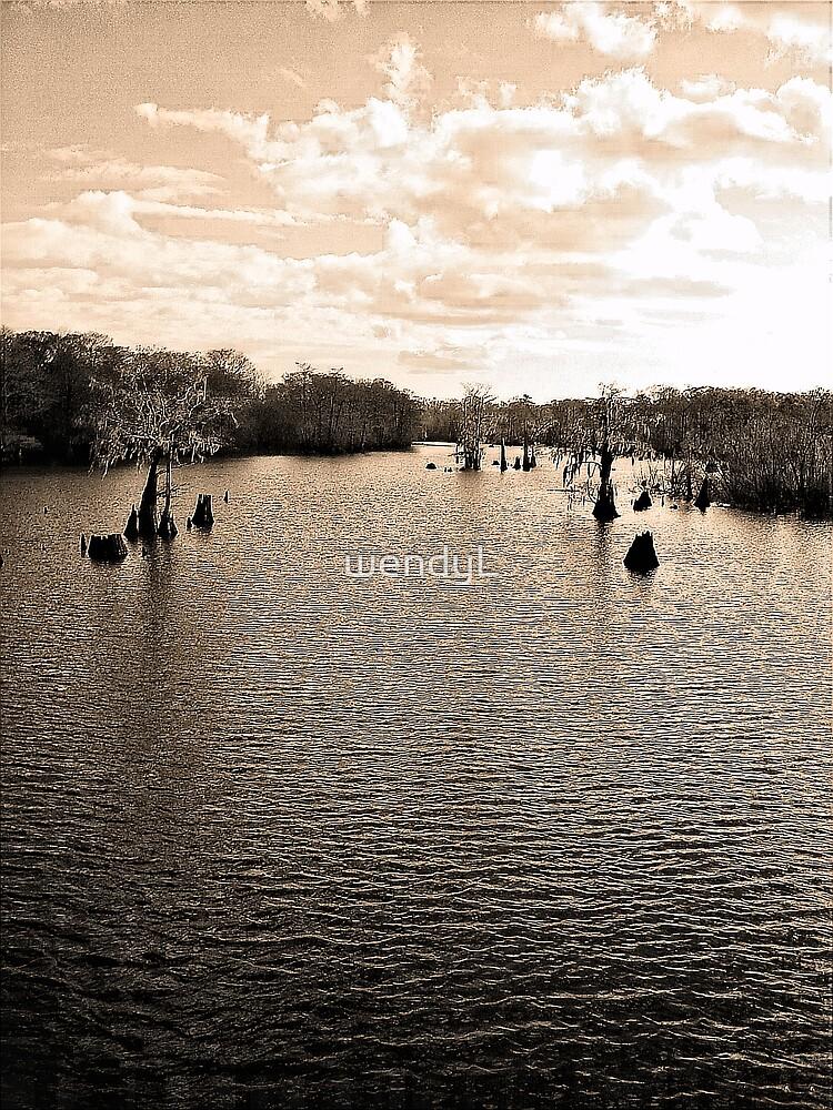 Dead Lake II by wendyL