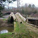 Beggars Bridge again by dougie1