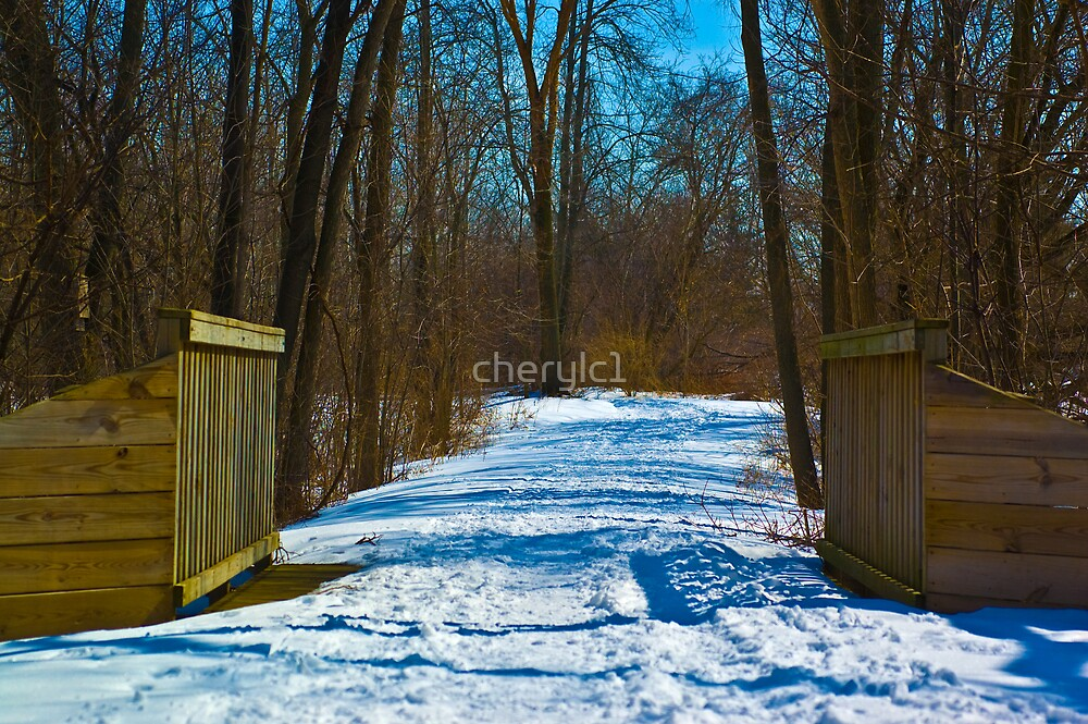 The Trail by cherylc1