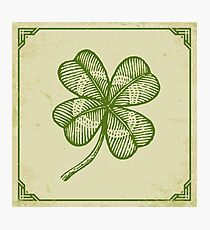 Vintage lucky clover Photographic Print