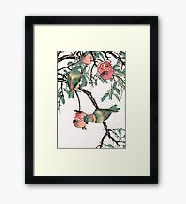 Pomegranate and Lovebirds Framed Print