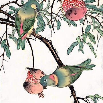 Pomegranate and Lovebirds by CatyArte