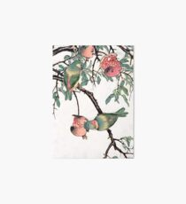 Pomegranate and Lovebirds Art Board