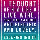 Escaping Indigo live wire quote by Eli Lang
