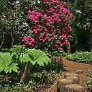 Riverside Gardens, Somerset by RedHillDigital