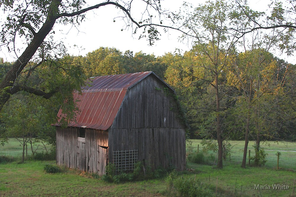 Our Barn by Maria White