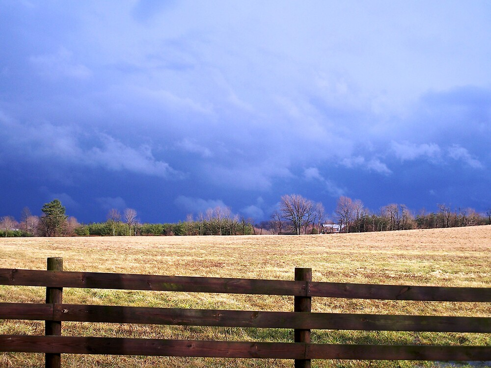 After the Storm by Judi Taylor