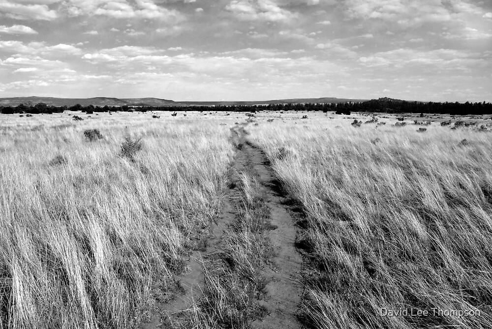 """Acoma,  Zuni Trail"" by David Lee Thompson"