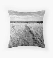 """""""Acoma,  Zuni Trail"""" Throw Pillow"""