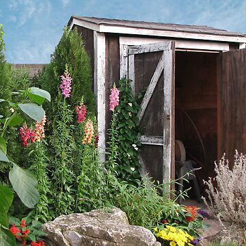 The Old Garden Shed by qbranchltd