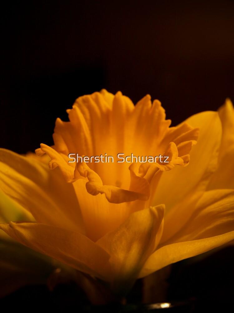 Golden Spring  by Sherstin Schwartz