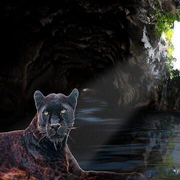 C.E. Black Leopard's Den by galet09
