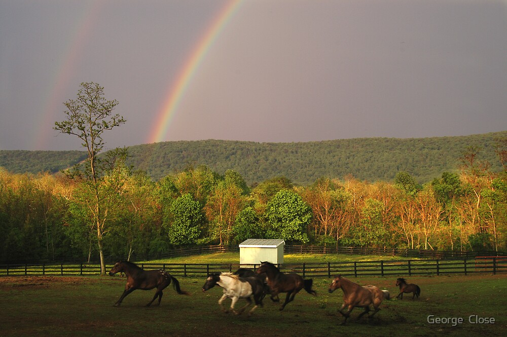 rainbow run by George  Close