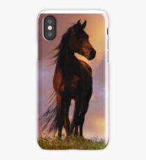 Beautiful Silhouetted Horse in Colorful Sundown iPhone Case